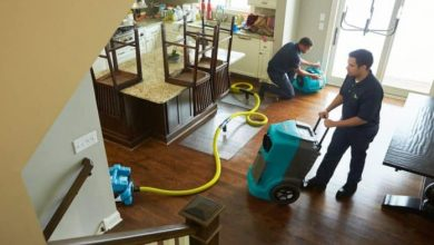 Photo of Tips About Water Damage Restoration From Industry Experts